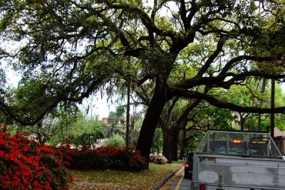 liberty street in Savannah, GA