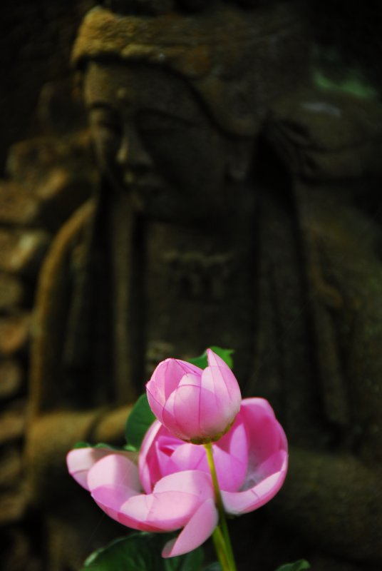 Flower with Buddha
