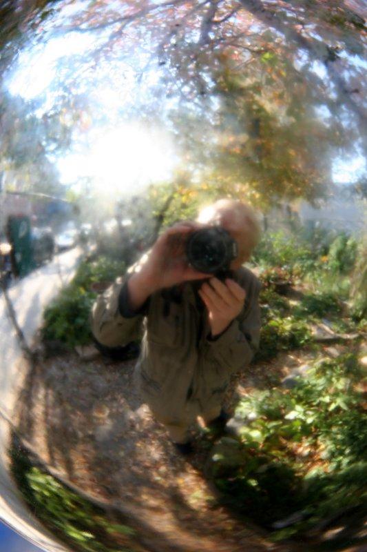Garden Gazing Ball Reflections