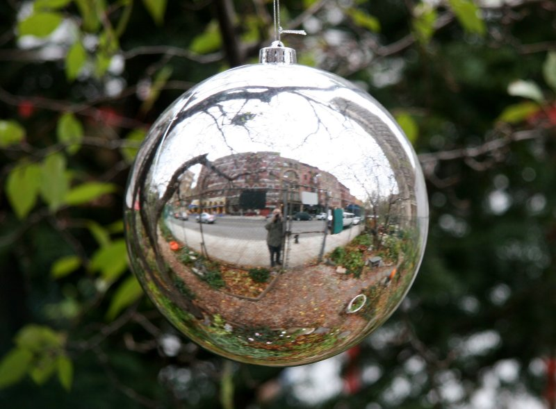 Silver Gazing Ball in an Apple Tree - LaGuardia Place Reflection