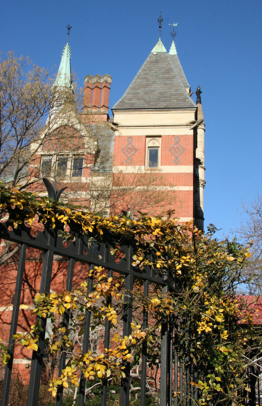 Library & East Garden Fence