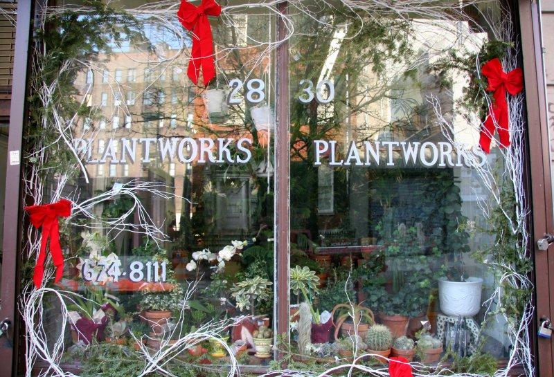 Plant Works Window