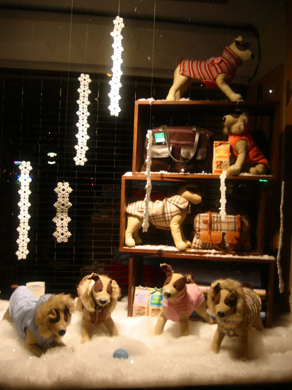 Home Assessories Store Window