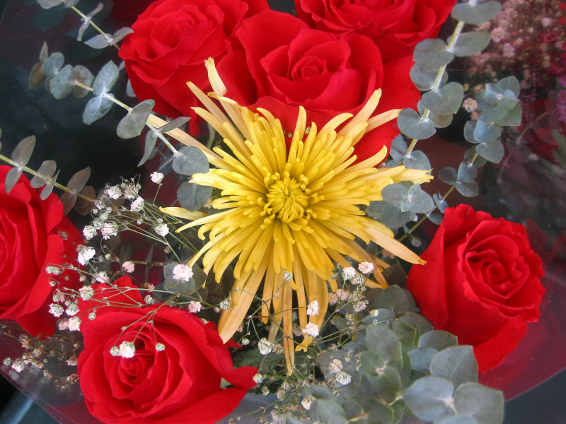 Florist Shop Bouquet at Key Food Market - Yellow Chrysanthemum, Red Roses & Baby Breath