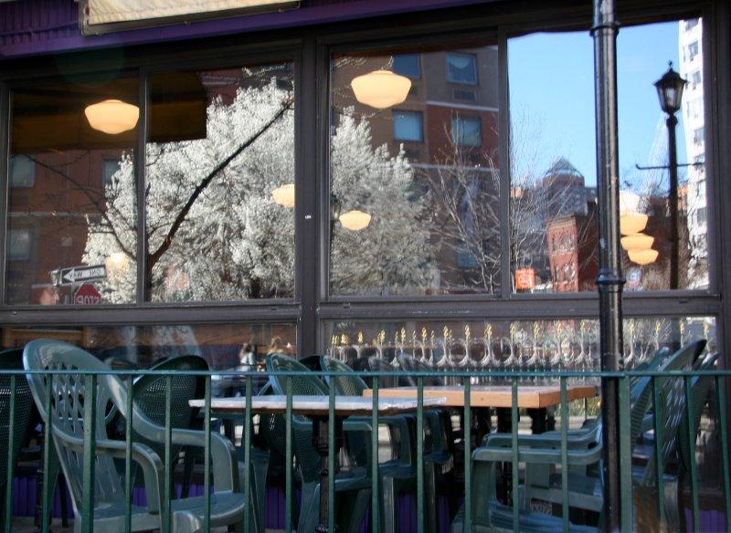 24 Hour Cafe - Pear Tree Window Reflection