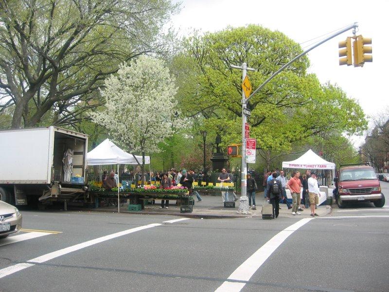 Tompkins Park at 7th Street