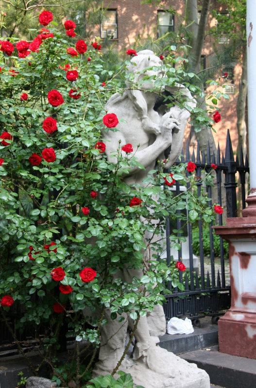 Saint Marks Churchyard - Roses