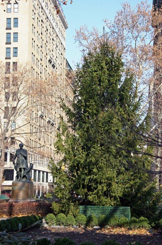 Christmas Tree - Southside of Gramercy Park