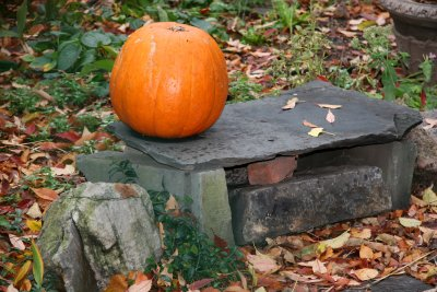 Pumpkin on a Stone Bench