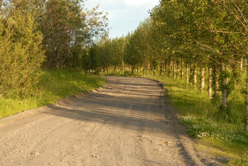 An old road