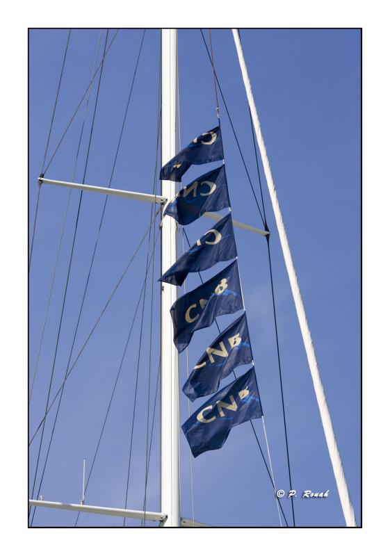 3599 - Flagpole