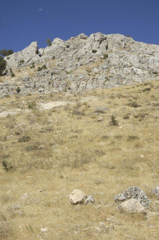 Karadut 2006 09 1642.jpg