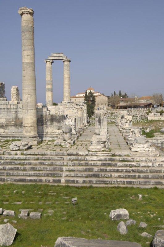 Didyma 2007 4374.jpg