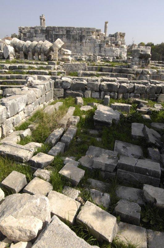 Didyma 2007 4381.jpg