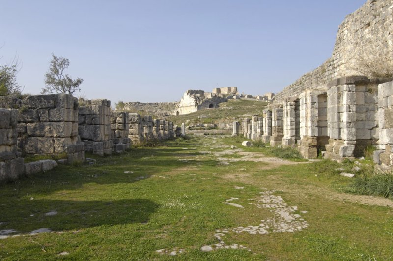 Miletus 2007 4620.jpg