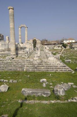 Didyma 2007 4376.jpg