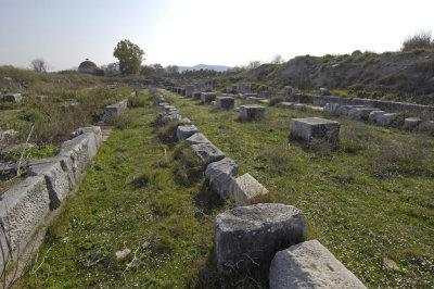 Miletus 2007 4606.jpg