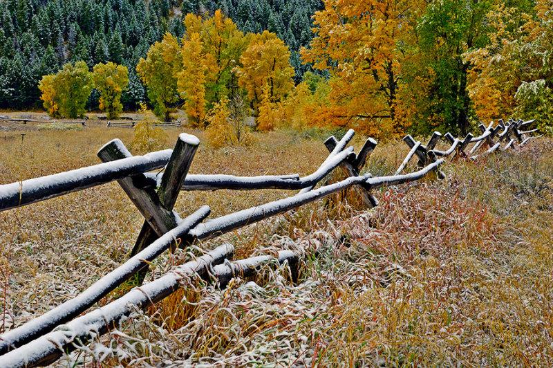 Autumn Snow on Buckrails.jpg