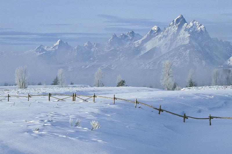 Winter at the Grand Teton.jpg