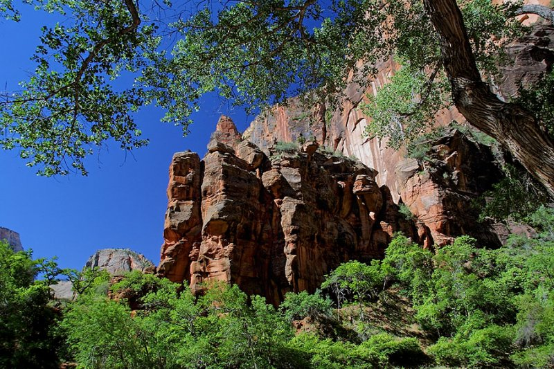 Zion in Late Spring.jpg