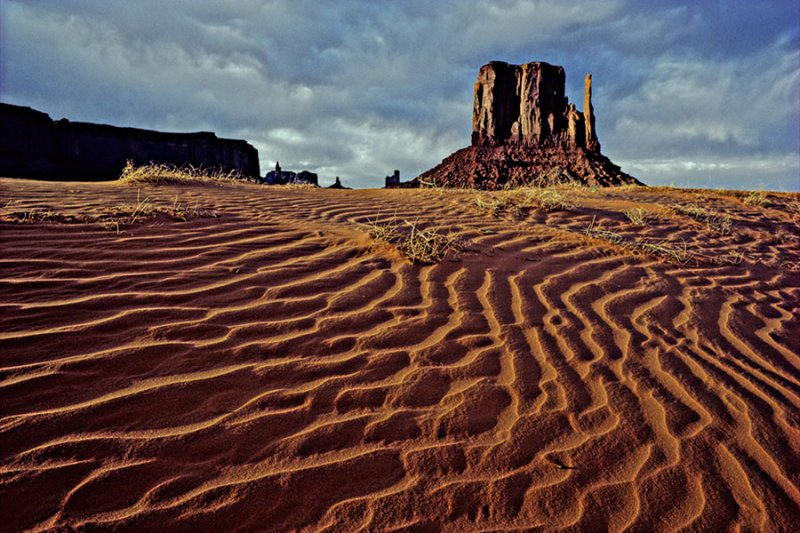 Sand Dunes at the Left Mitten.jpg