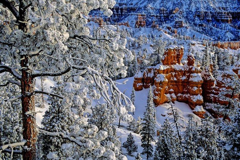 Snowfall in Bryce Canyon.jpg