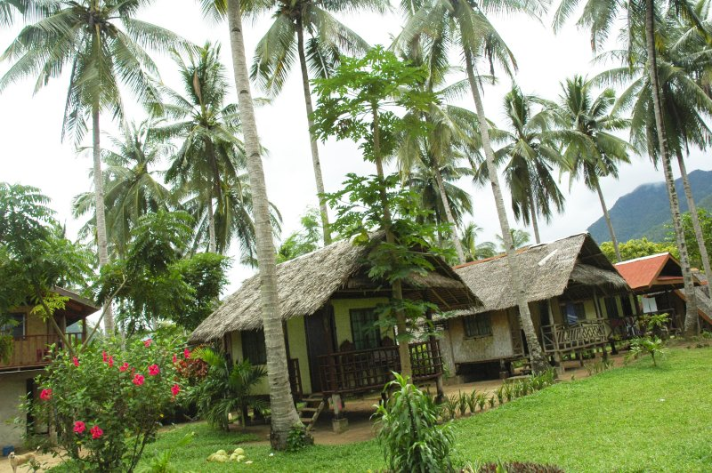 Huts along the beach for rent_.jpg