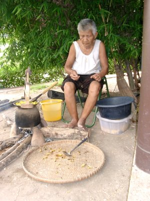 Old Lady Cooking Silkworms