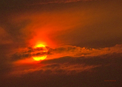 zP1010446 Wildfire-tinted sun at Lake Five near West Glacier Montana.jpg