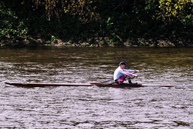 2013 - chiswick regatta - IMGP8536