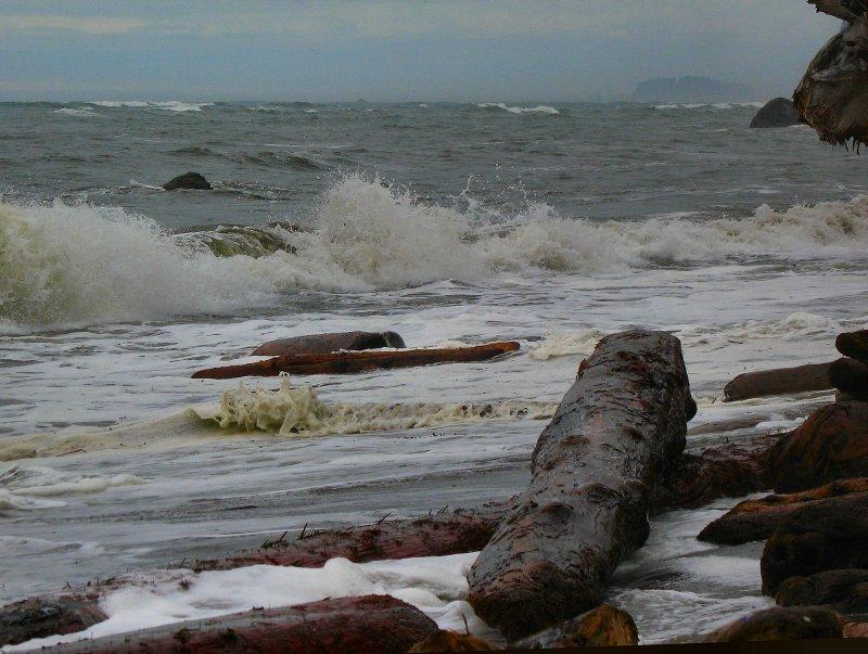 high tide2.jpg
