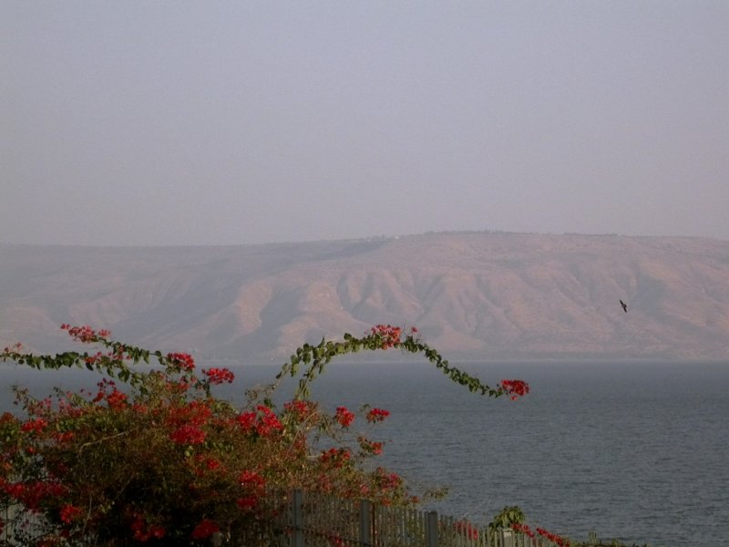 the sea with Golan Heights behind & its not a shepherds hut on top