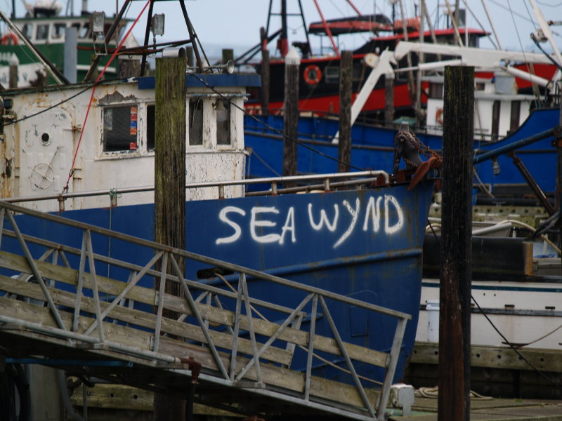 Sea Wynd - da Krew is Hooked on Fawnics
