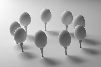 circle of eggs