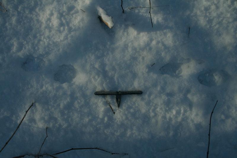 Unknown Tracks (stride)