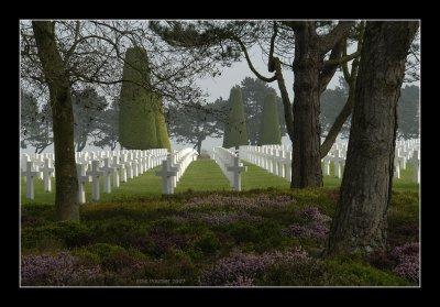 War Cemetery - Colleville 4