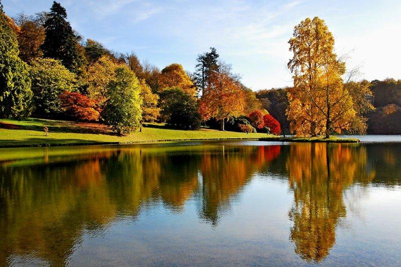Autumn glory, Stourhead (3645)