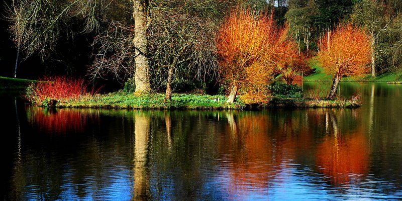 Island colours, Stourhead
