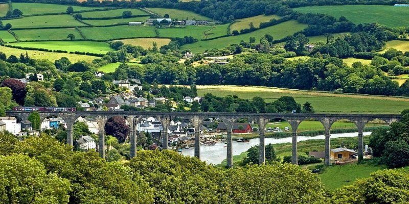Calstock viaduct, from Cotehele