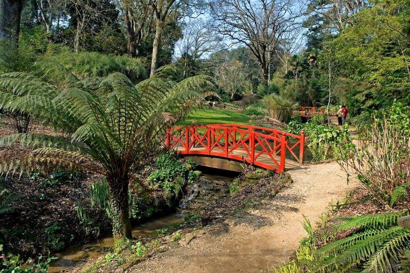 Red bridges, Abbotsbury Gardens (2369)