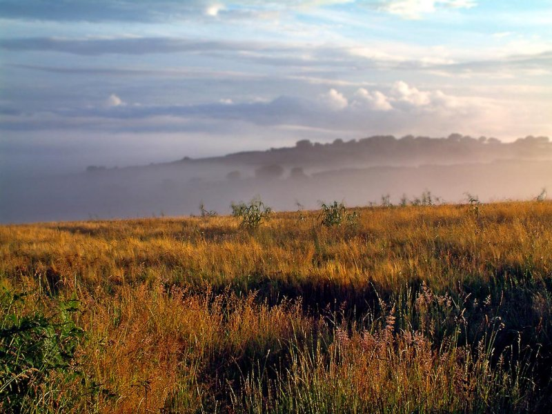 Early morning near Dittisham