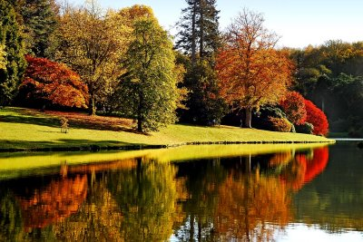 Autumn splendour, Stourhead (2151)