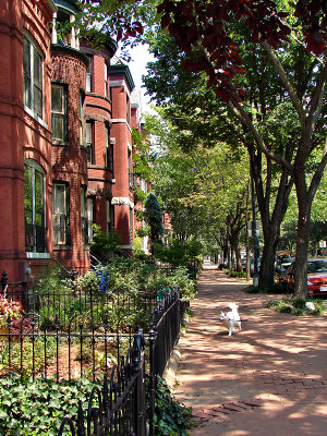 Houses on Lincoln Park