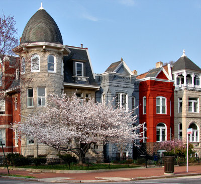 Cherry on East Capitol