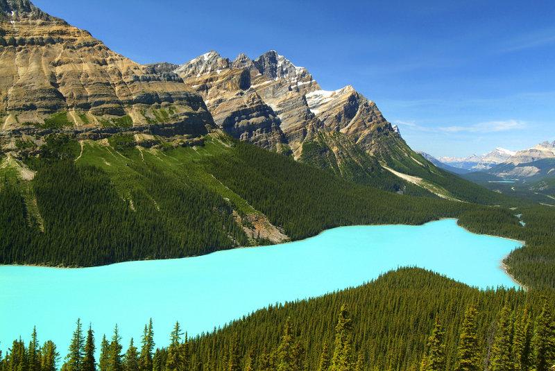 Banff NP - Peyto Lake