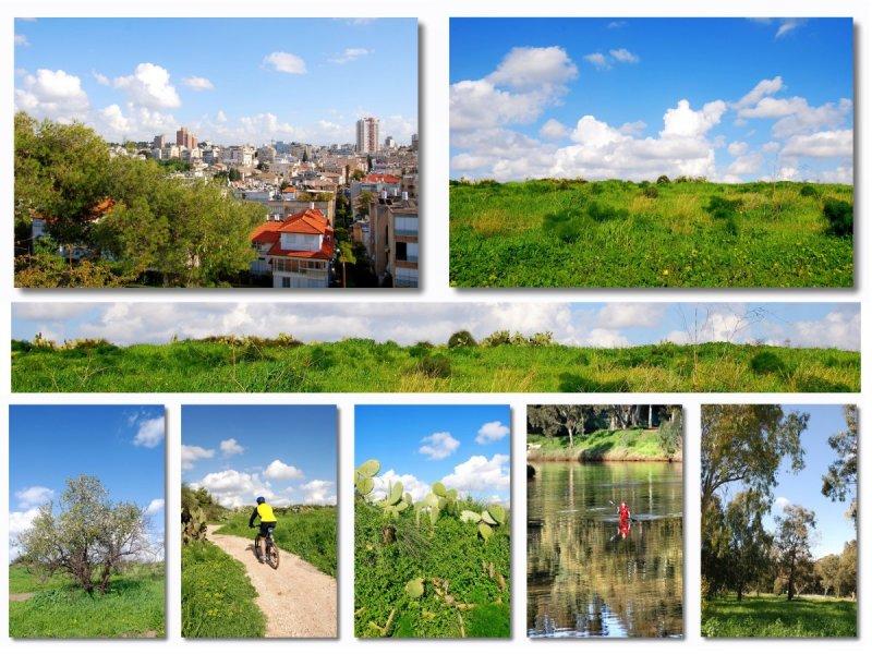 Tel Aviv-Ramat Gan  Collage.jpg