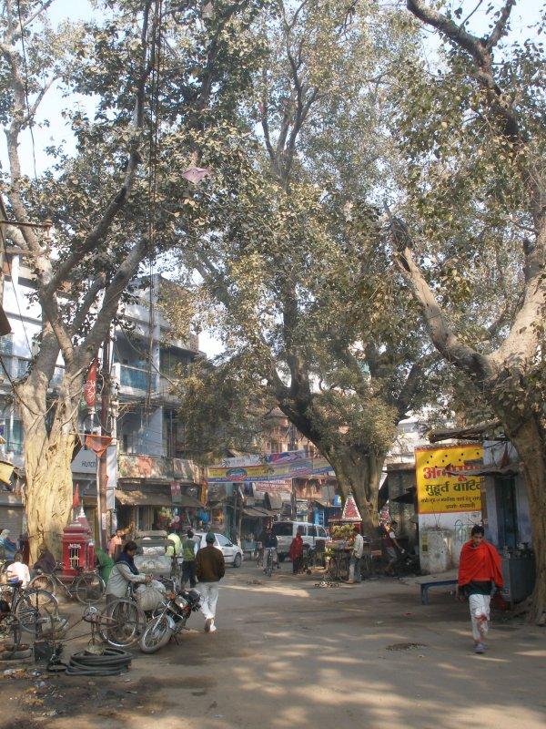 Street, Assi Ghat
