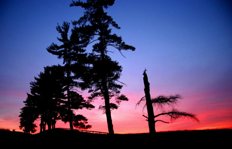 Sunset at Blandy Farm.