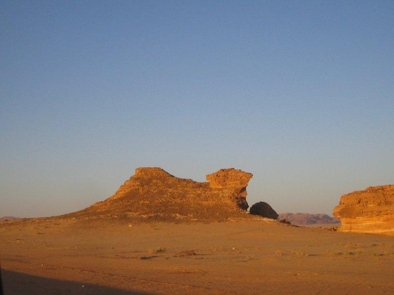 Al-Oula VIA - Sitting Camel.JPG