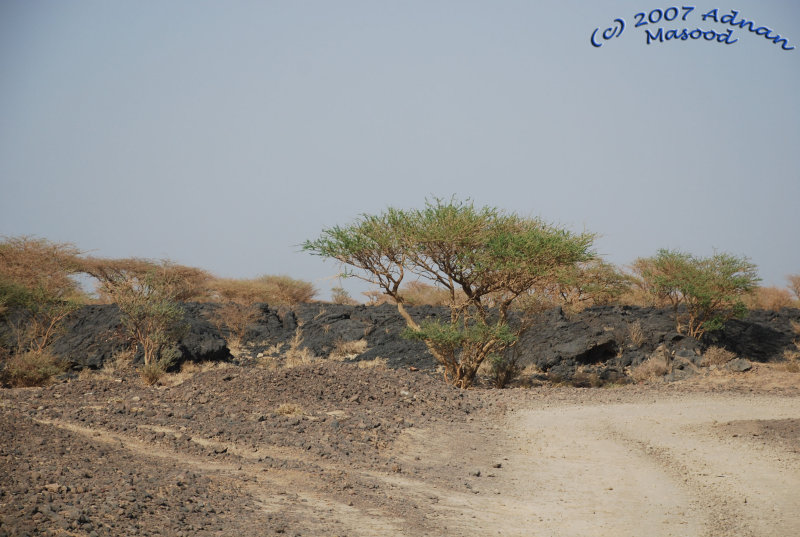 Driving thru lava fields - II.jpg